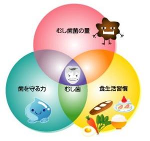 image-kasai081